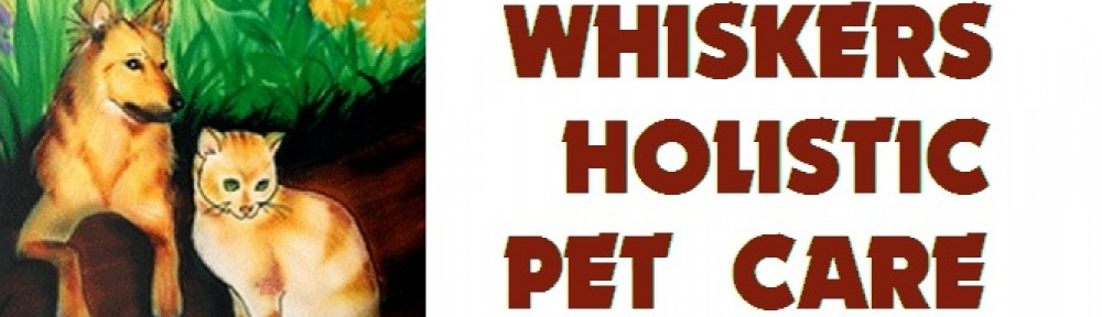 Whiskers Holistic Petcare Blog